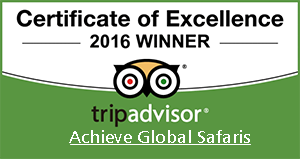 achieve global safaris trip advisor