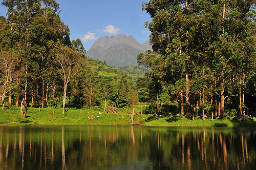 10 Days Best of Rwenzori Hike