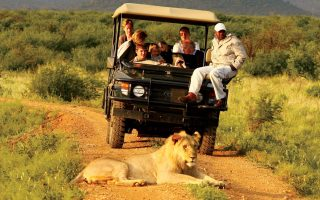 7 Days Luxury Safari in Uganda