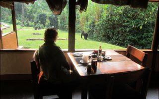 16 Days best of Rwanda