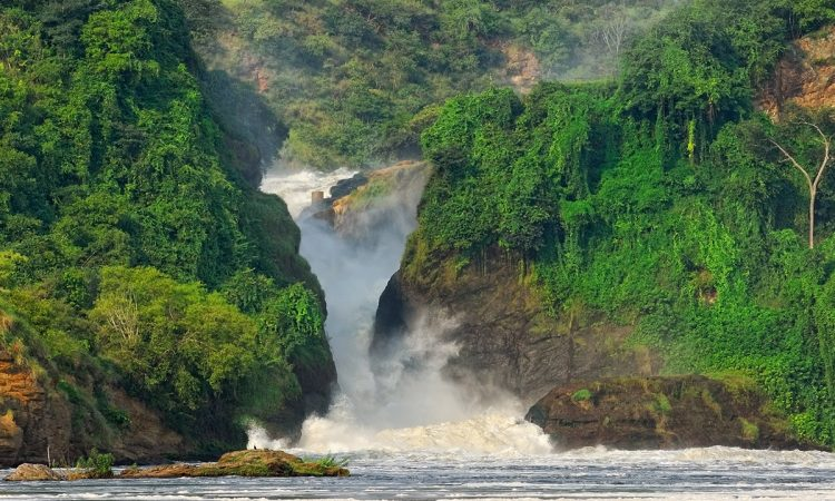 4 Days Murchison Falls National Park