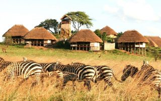 What to do in Kidepo Valley National Park