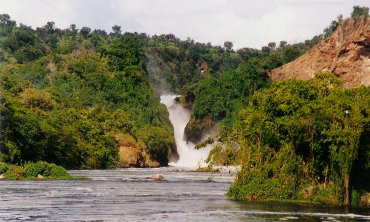Best areas for wildlife watching in Murchison Falls National Park