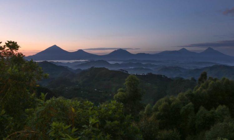 Nkuringo Region of Bwindi