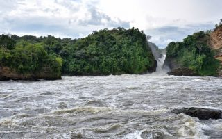 Park Entry Fees for Murchison Falls National Park