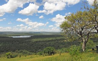 Why Visit Lake Mburo